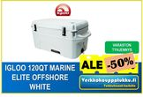 Igloo 120QT Marine Elite Offshore